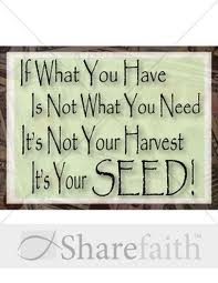 Its your Seed